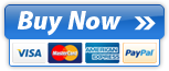Secure Online Payments and Credit Card Processing by BlueSnap